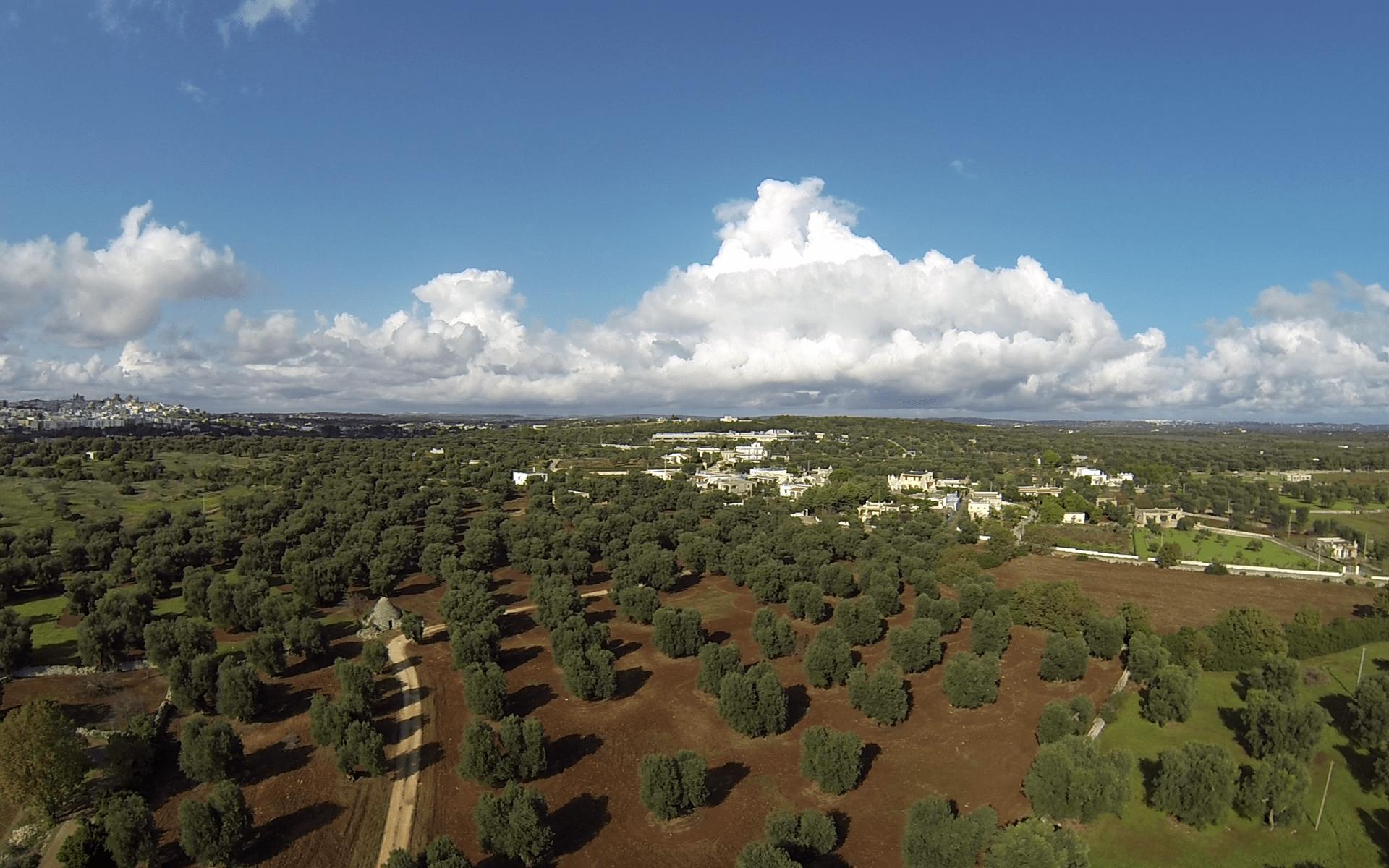 homepage - torre guaceto - servizi - drone - Puglia - Pxcedizioni